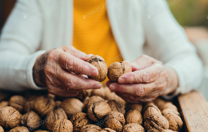 An elderly woman outdoors on a terrace on a sunny day in autumn, holding walnuts.