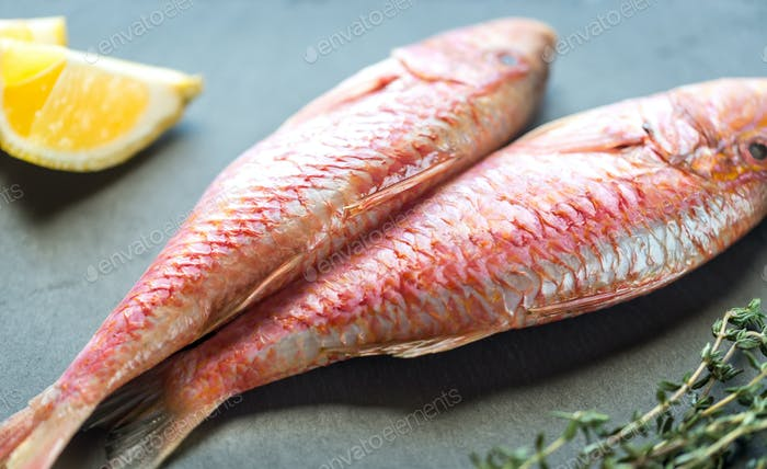 Raw red mullet with ingredients