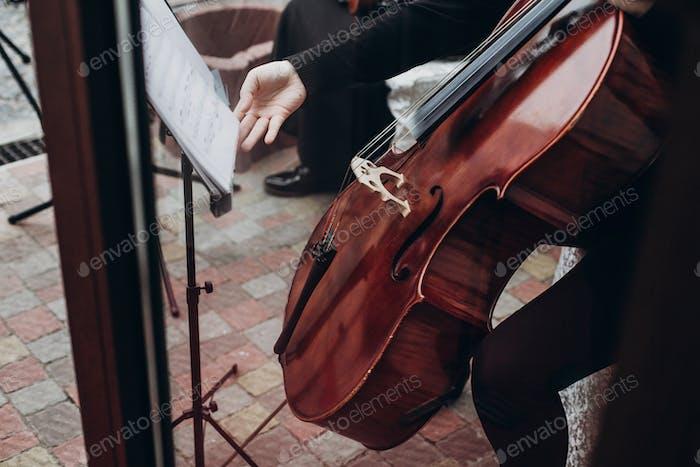 Musiker spielen auf Kontrabass bei Luxus-Hochzeitsempfang