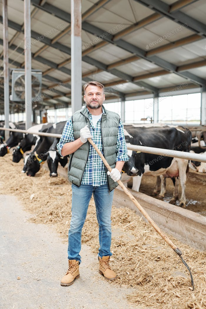 Young successful farmer with hayfork working by cowshed