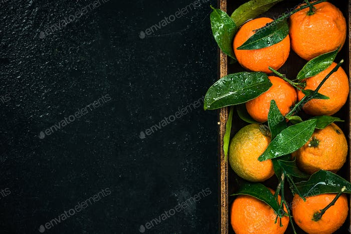 Tangerines or clementines in wooden crate, border background
