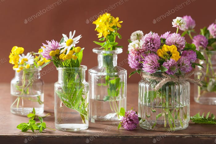 colorful medical flowers and herbs in bottles