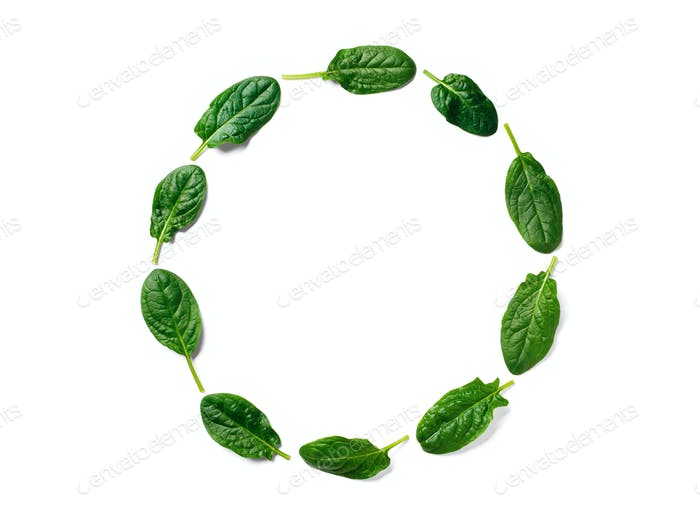 Pattern from baby spinach in round frame isolated