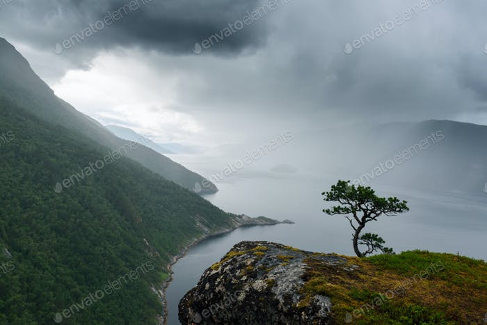 Misty morning on Tingvollfjorden flord