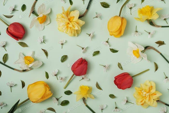 Viele verschiedene Frühlingsblumen auf grünem Hintergrund