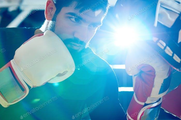 Confident Boxerboxer Trainingstasche