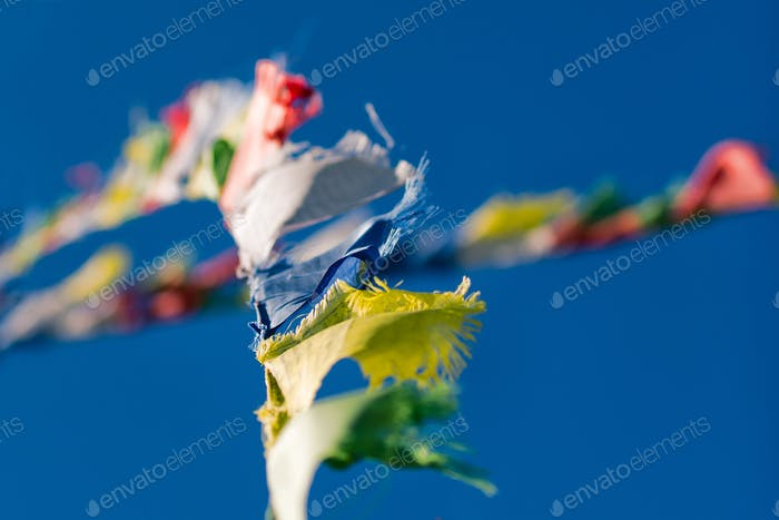 Colorful Tibetan Buddhist prayer flags