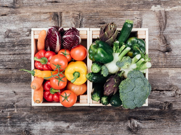 Fresh tasty vegetables in wooden crates