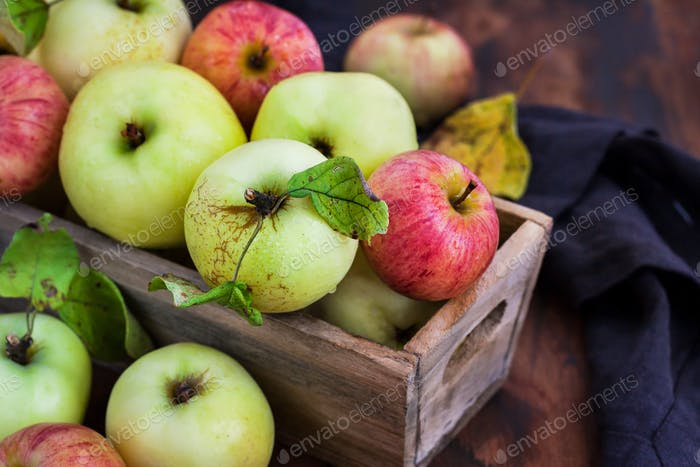 Fresh ripe colorful apples in wooden box on rustic background