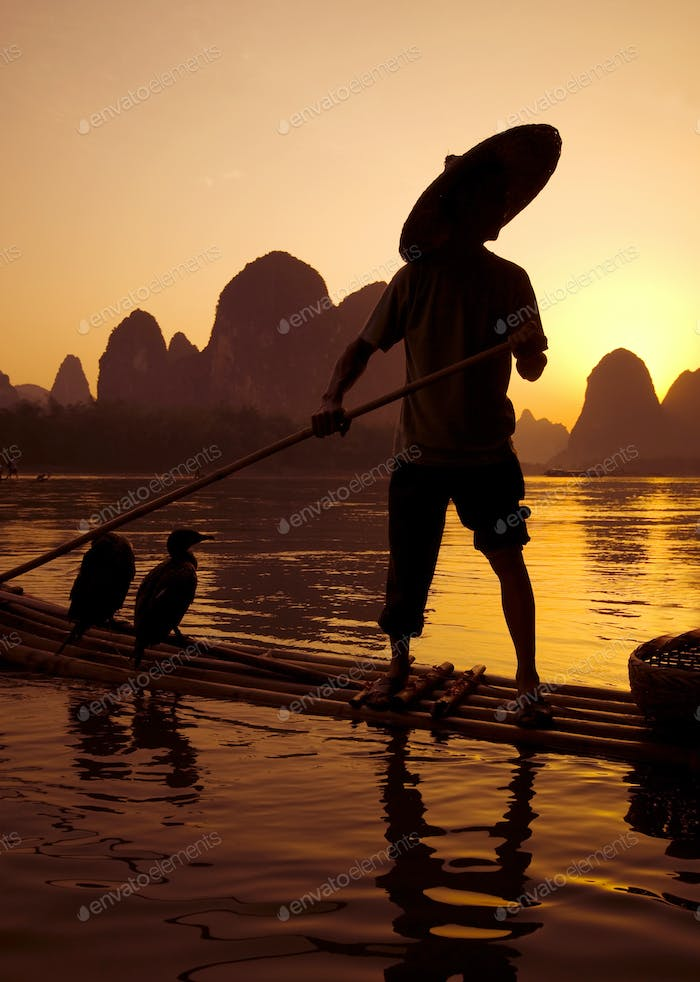 Chinese Man Cormorant Fishing on River