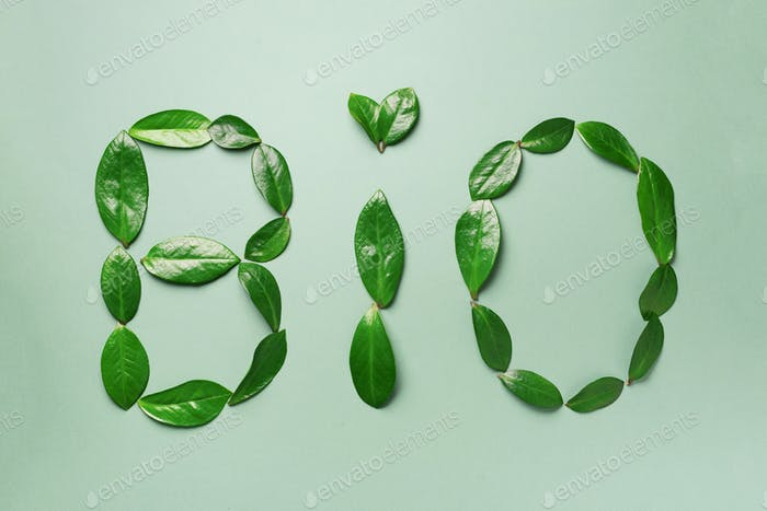 Word Bio made of leaves on green background. Top view. Flat lay. Ecology, eco friendly planet and