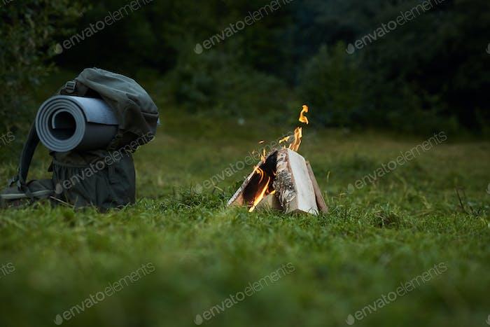 Lagerfeuer im Wald
