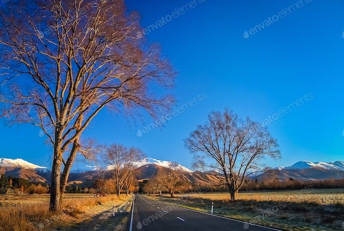 Mountain Scenery of New Zealand