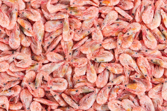 Frozen boiled shrimp without glaze, as a background.