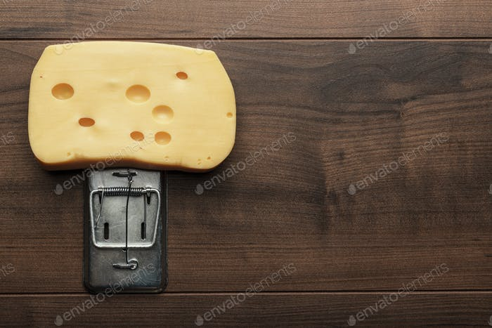 Big Stück Käse In Mausefalle