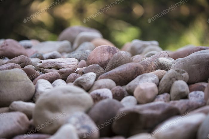 Thumbnail for Grass, stones water with defocussed background, Venezuela