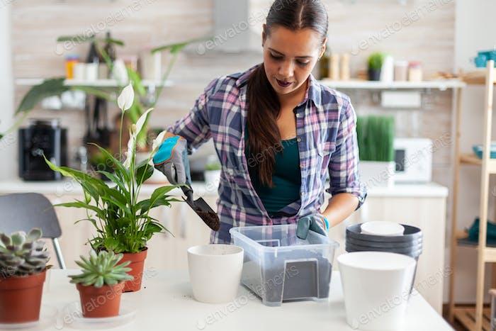 Using feritle soil for flowers