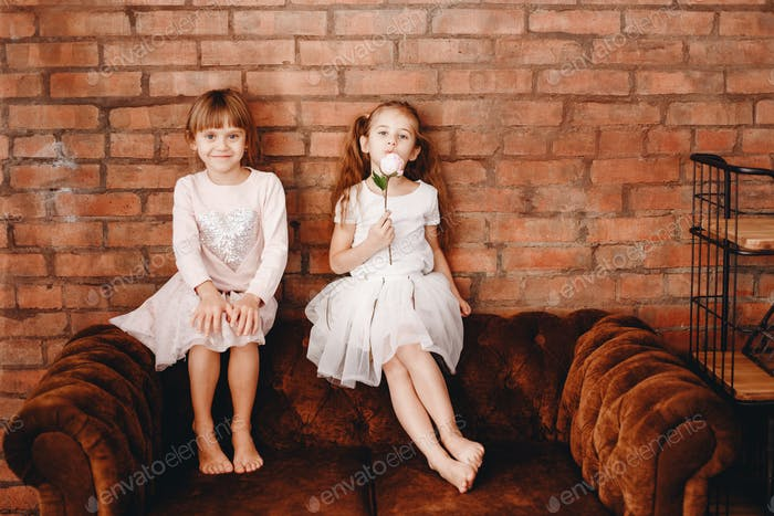 Two charming sisters dressed in beautiful dresses are sitting on the brown armchair on the