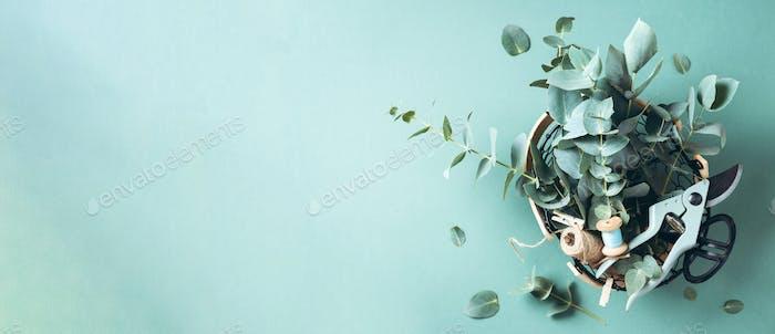 Basket with eucalyptus flowers, garden pruner, scissors over green background. Florist concept, top