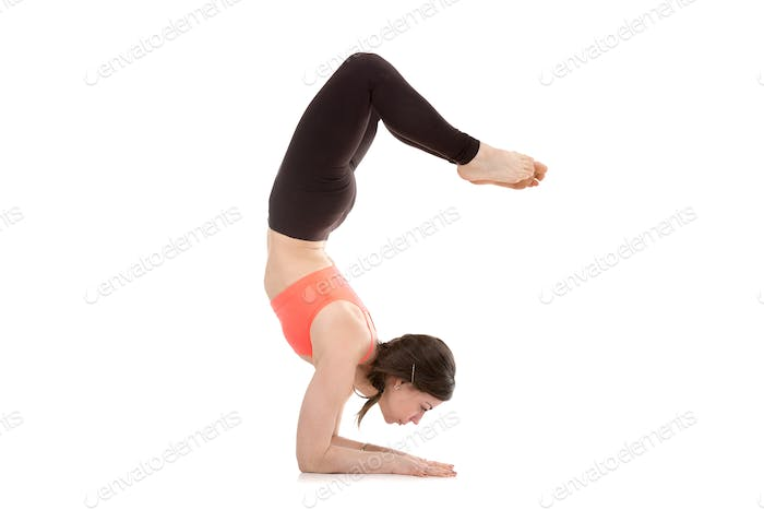 Yogi female in yoga Scorpion Pose Vrischikasana 1