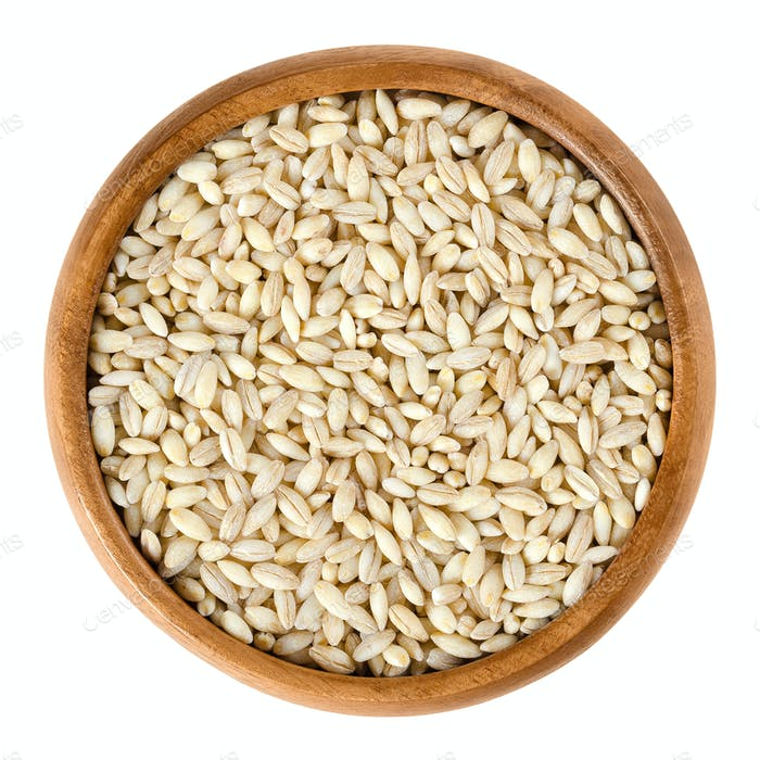 Processed pearl barley in wooden bowl over white