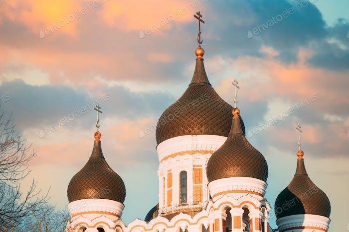 Tallinn, Estland. Kuppeln der Alexander-Newski-Kathedrale ist die orthodoxe Kathedrale in der Altstadt von Tallinn