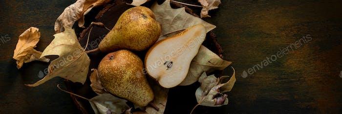 HerbsthintergrundBanner