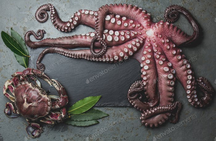 Seamos Background With Copy Space. Octopus and Crab on Slate Background