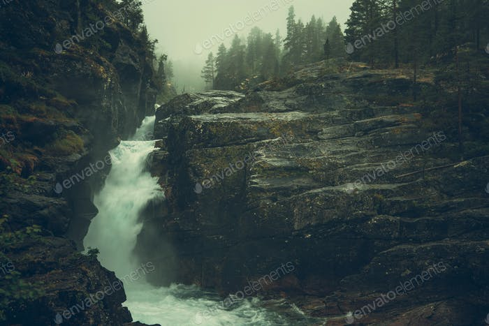 Raw Foggy Waterfalls