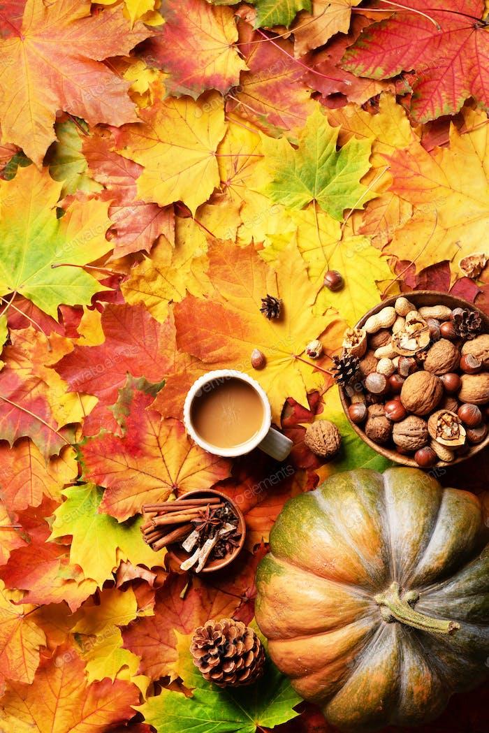 Kürbis, Holzschale mit Nüssen, Kaffeetasse, Kegel, Zimt über beige kariert und bunten Blättern