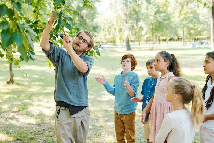 Biology teacher showing twig to kids