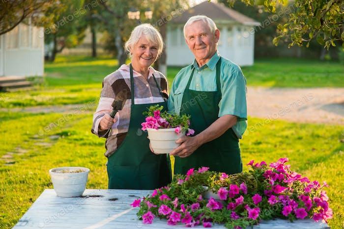 Elderly couple and flower pot