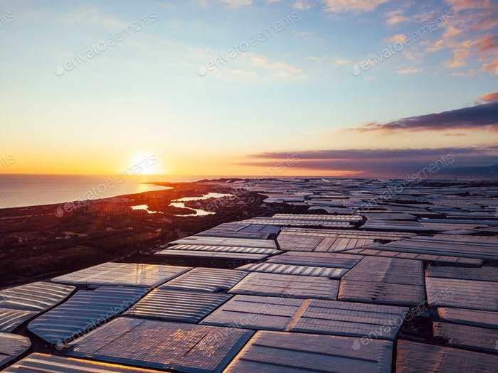 Aerial panorama greenhouses in the Almerimar, Spain, at sunset