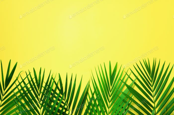 Tropical palm leaves on pastel yellow background. Minimal summer concept. Creative flat lay with