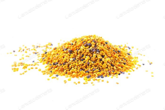 Grains of pollen bees