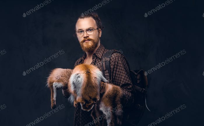 Redhead hipster guy in glasses dressed in a brown shirt, holds the fox skin, posing at a studio