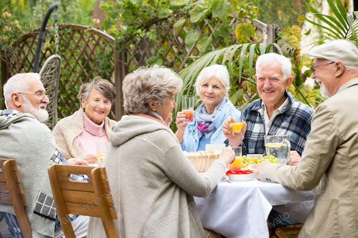 Group of happy senior people during garden party