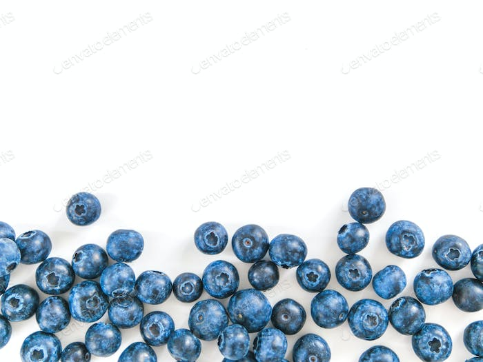 Blueberry isolated, white,copy space
