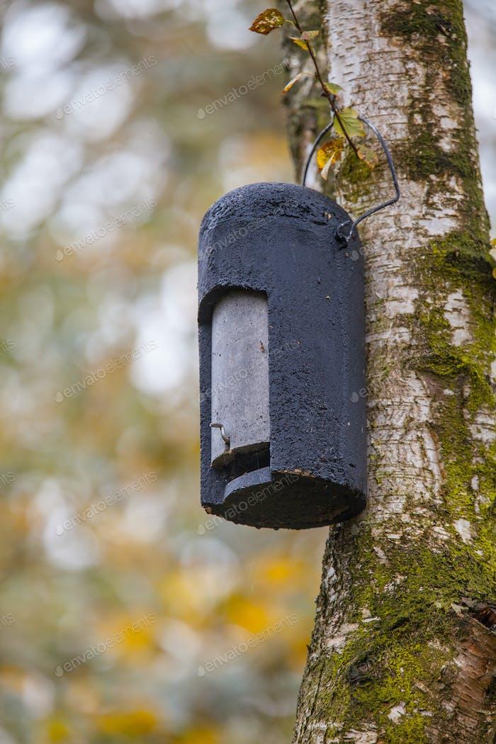 Ökologische Gartenarbeit Batbox