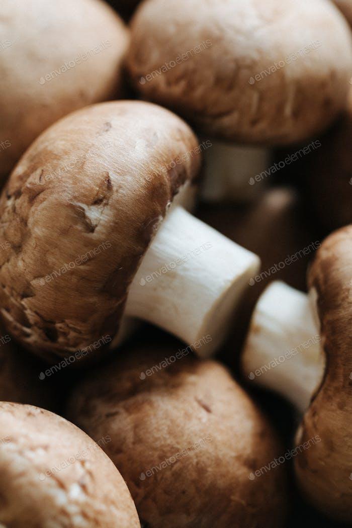 Macro shot of fresh champignons Portobello
