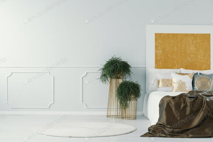 Wall molding on an empty wall next to plants and double bed in a
