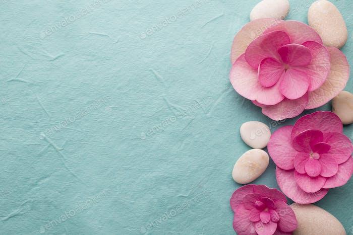 Rosa Blume.
