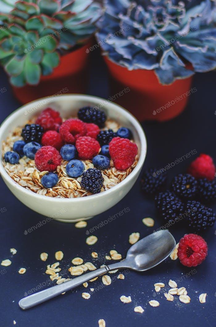 Gesundes Frühstück. Weißer Teller mit Haferflocken und verschiedenen Beeren auf blauem Hintergrund