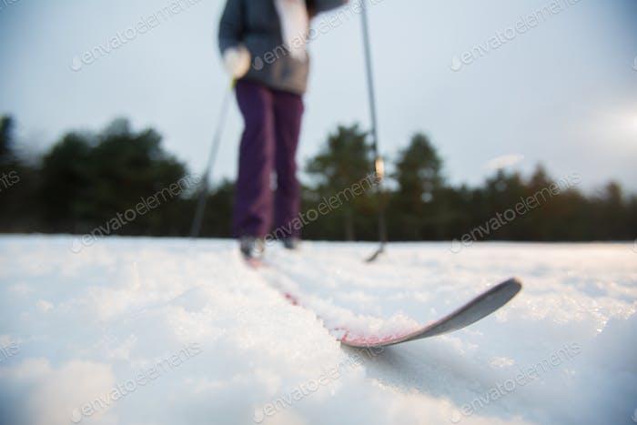Ski on track