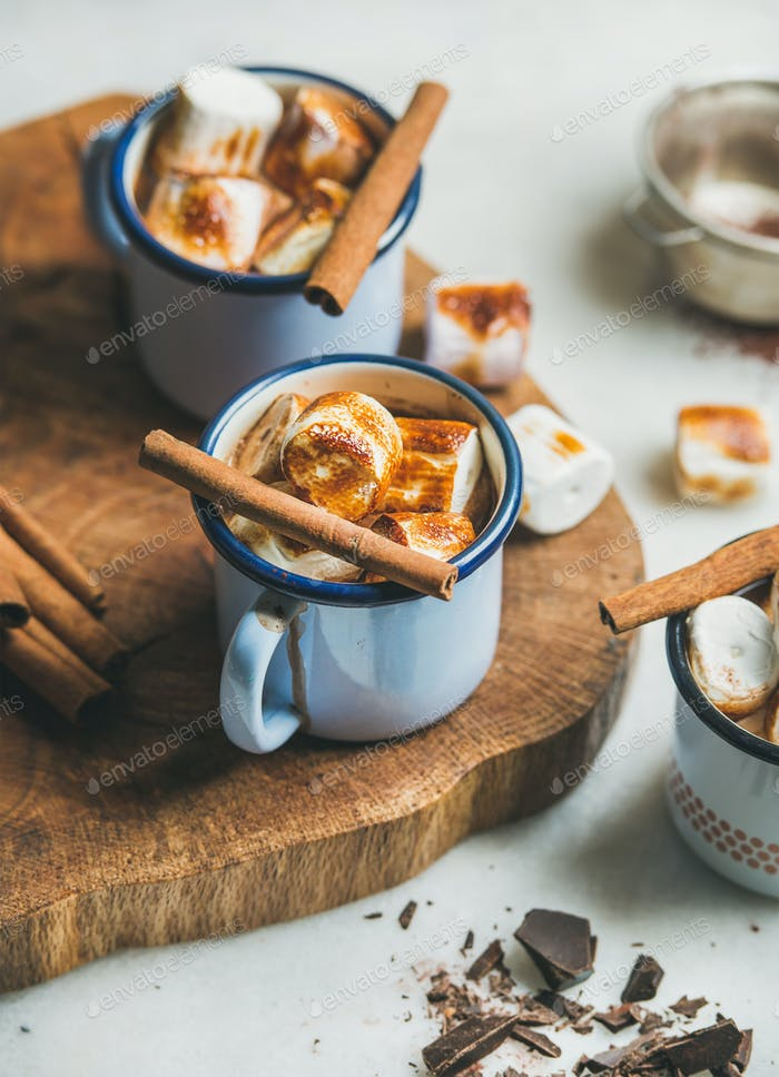 Hot chocolate with cinnamon and roasted marshmallows in mugs