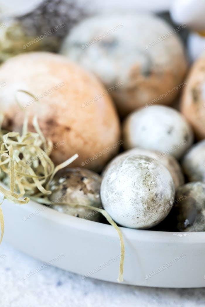 Пасхальная композиция яйца, окрашенные в тарелки с перьями