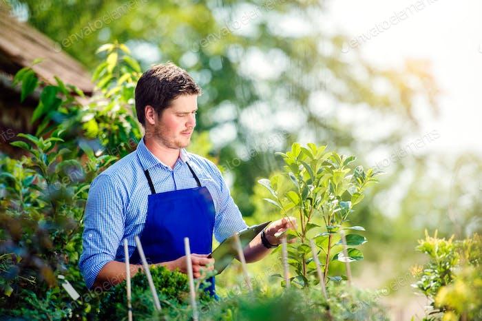 Gardener holding clipboard, in his garden, green sunny nature