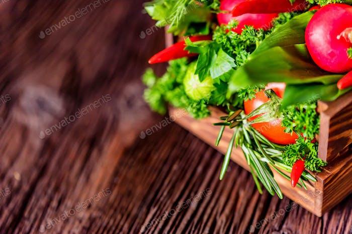 Frisches Gemüse und Kräuter in Holzkiste