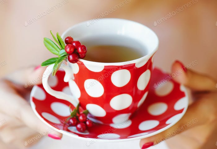 Preiselbeere (Vaccinium vitis-idaea) Tee in Frauenhänden