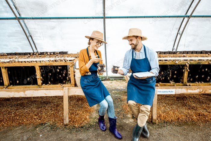 Man and woman working on the farm for snails growing